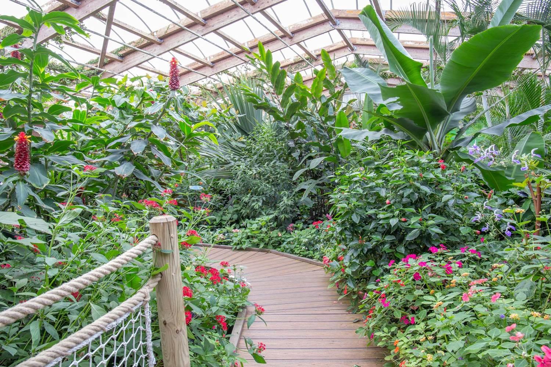 jardin-aux-papillons-morbihan-bretagne-sud-30 © © Magalie BARRE