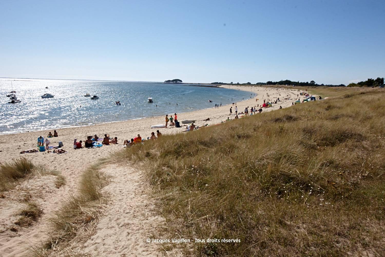 plage-camping-Falaise-locmariaquer-morbihan-bretagne-sud ©