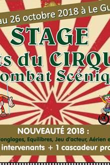Stage de cirque et combat scénique à Le Guerno