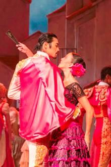 Cinéma - ballet : Don Quichotte