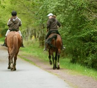 L'Equibreizh : la Bretagne à cheval