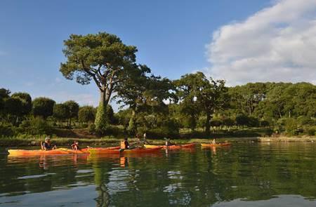 Balade nautique kayak rivière du Bono