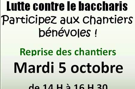 "Chantiers bénévoles ""Baccharis"""