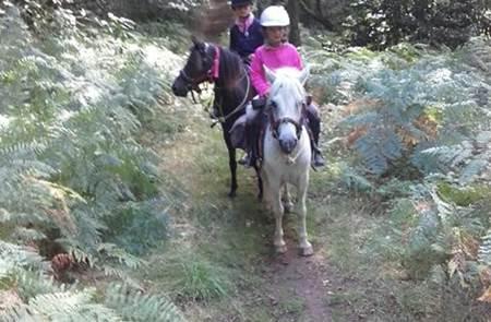 Centre Equestre Les Poneys du Roch