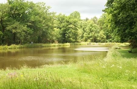Parc de Mané-Bogad à Ploemel