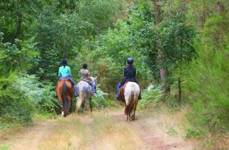 Centre d'activités équestres de Brocéliande