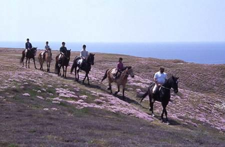 Equitation : Domaine des chevaliers de Bangor