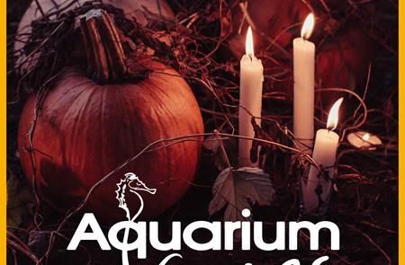 Halloween à l'Aquarium de Vannes